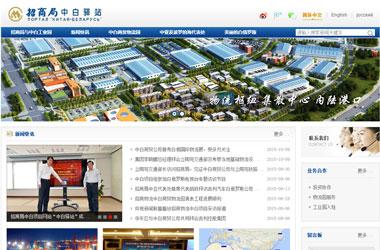 网站建设策划案例_招商局物流集团有限公司中白驿站